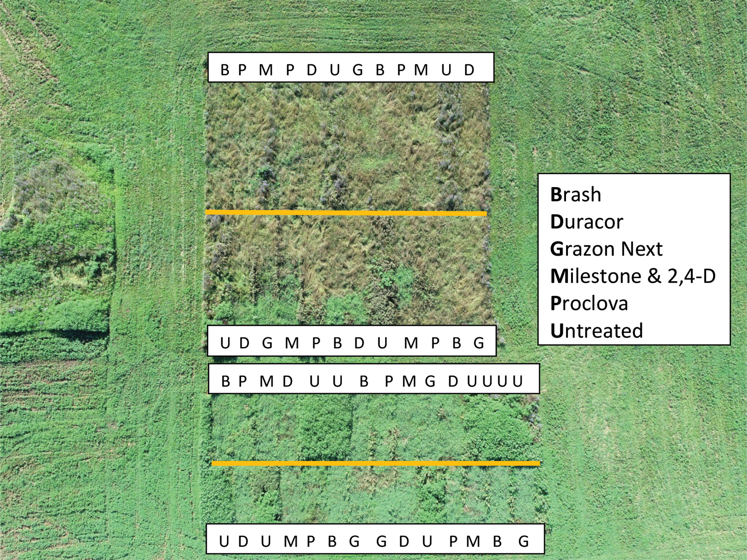 aerial view of pasture weed control project