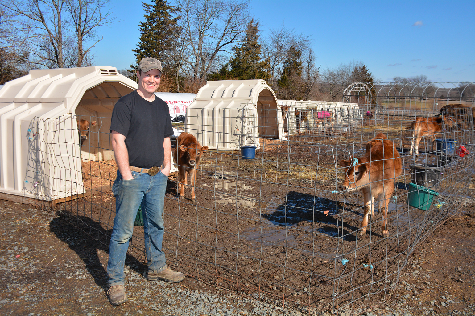 Dan Lyness stands with calves outside at Spring Run Dairy LLC