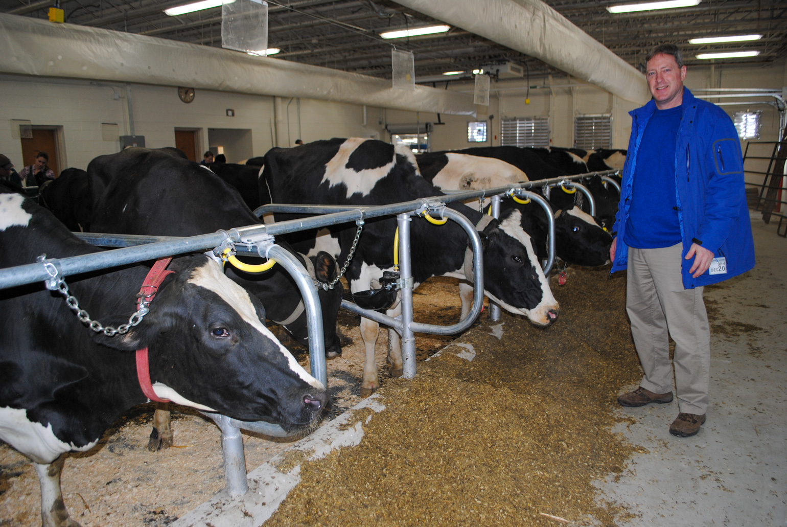 Kent Weigel, chair of the Department of Dairy Science at UW-Madison, posing in front of dairy cows