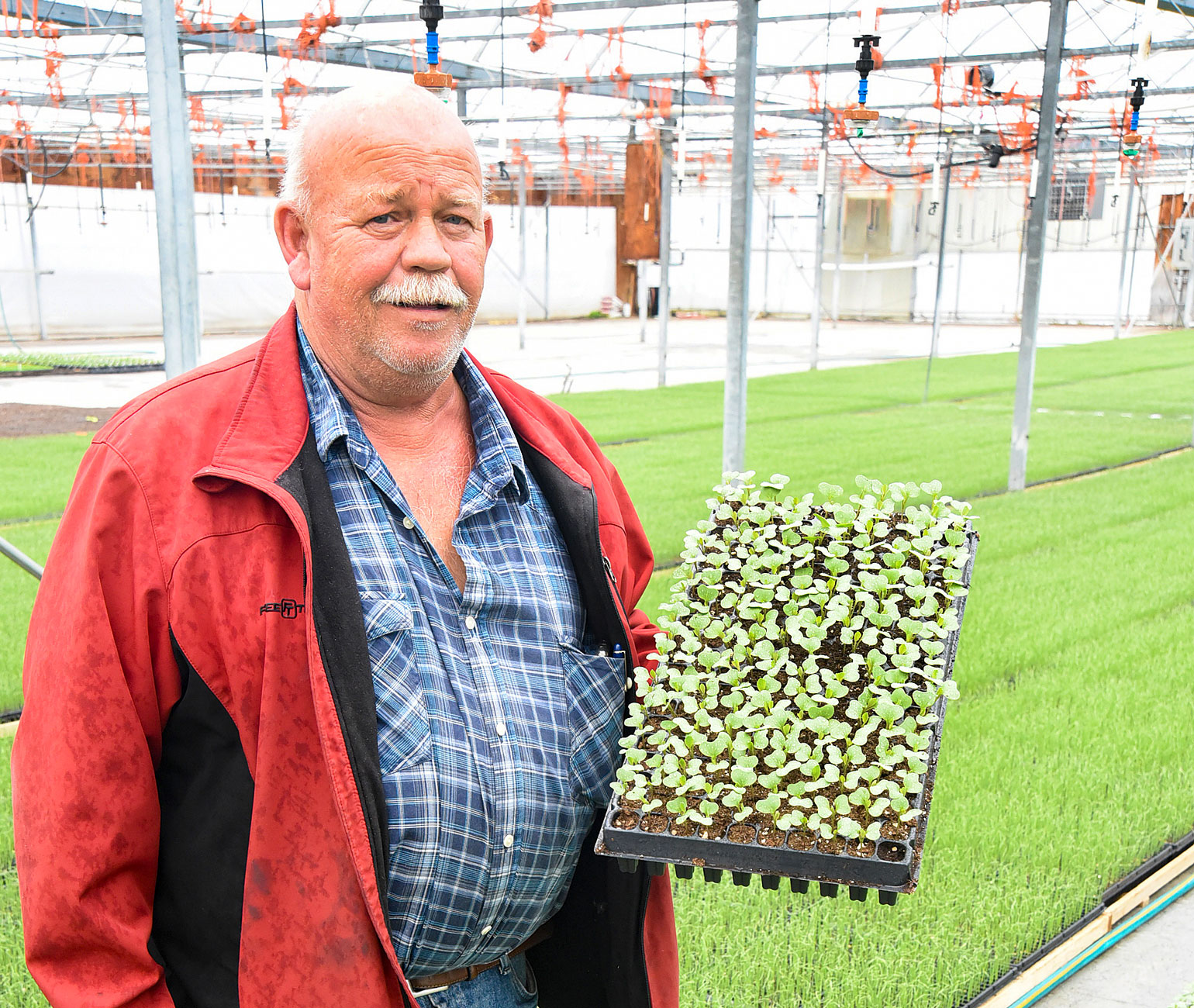Daniel Riner, owner of Triple P Farms, holds up a tray of germinated coated seeds