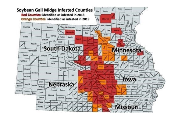 Soybean gall midge distribution in 2018 and 2019 map.
