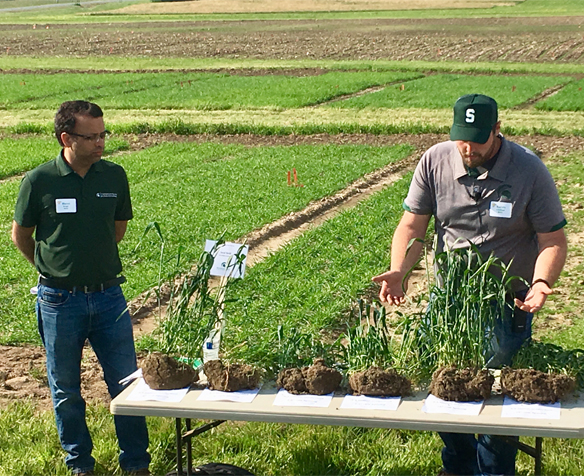 Kalvin Canfield and Dr. Manni Singh with Michigan State University explain wheat seeding population trials during the Michigan Wheat Program summer field day, June 12