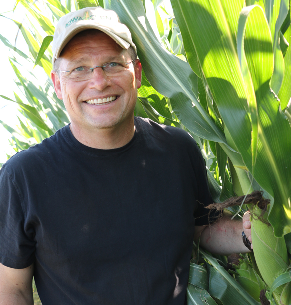 says Mark Heckman standing with corn stalks