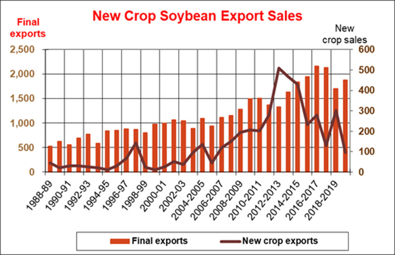 071119NewCropSoybeanExportSales770.jpg