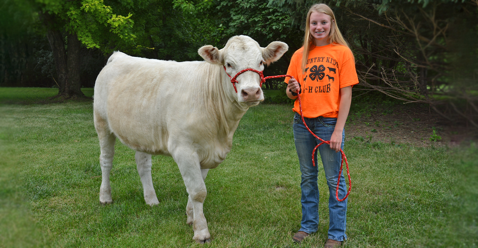 Macy Rohner with Charolais heifer