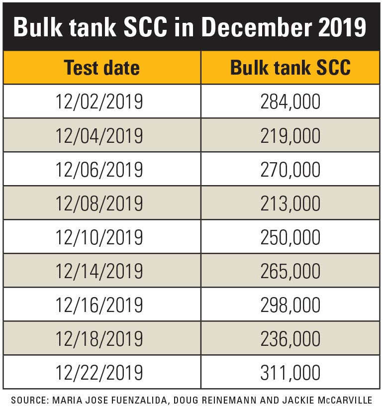 A table depicting the bulk tank somatic cell count at different testing dates during December of 2019