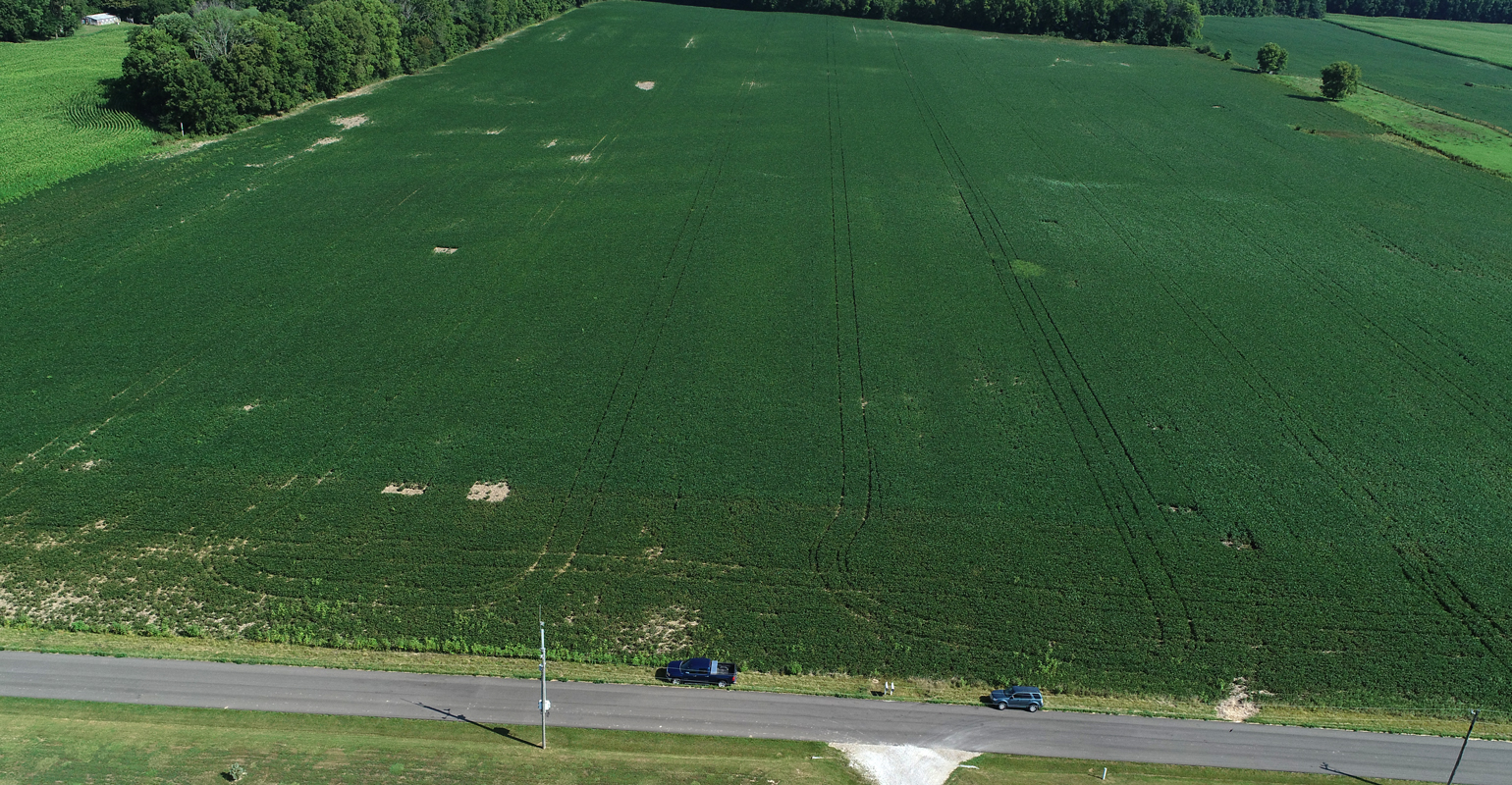 bare spots and other blemishes seen in field from drone
