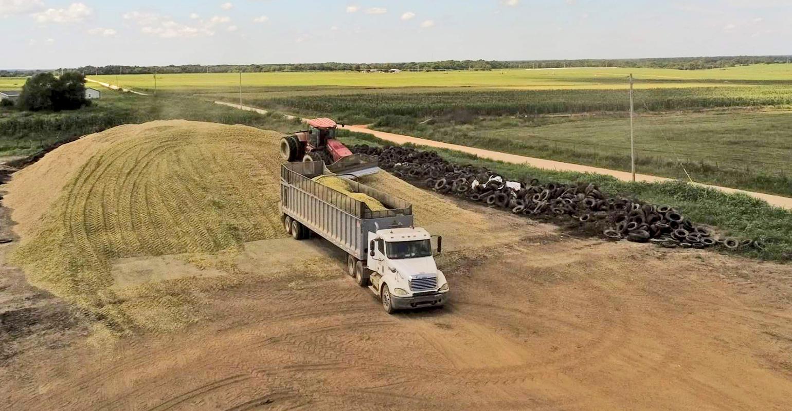 a truck delivers chopped corn to silage pile