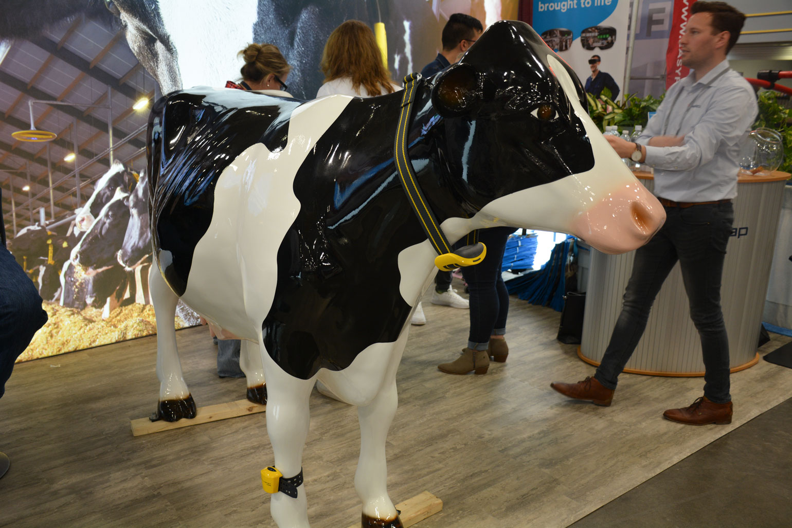 Smart tags are shown around the neck and ankle of a life-size plastic cow at World Dairy Expo