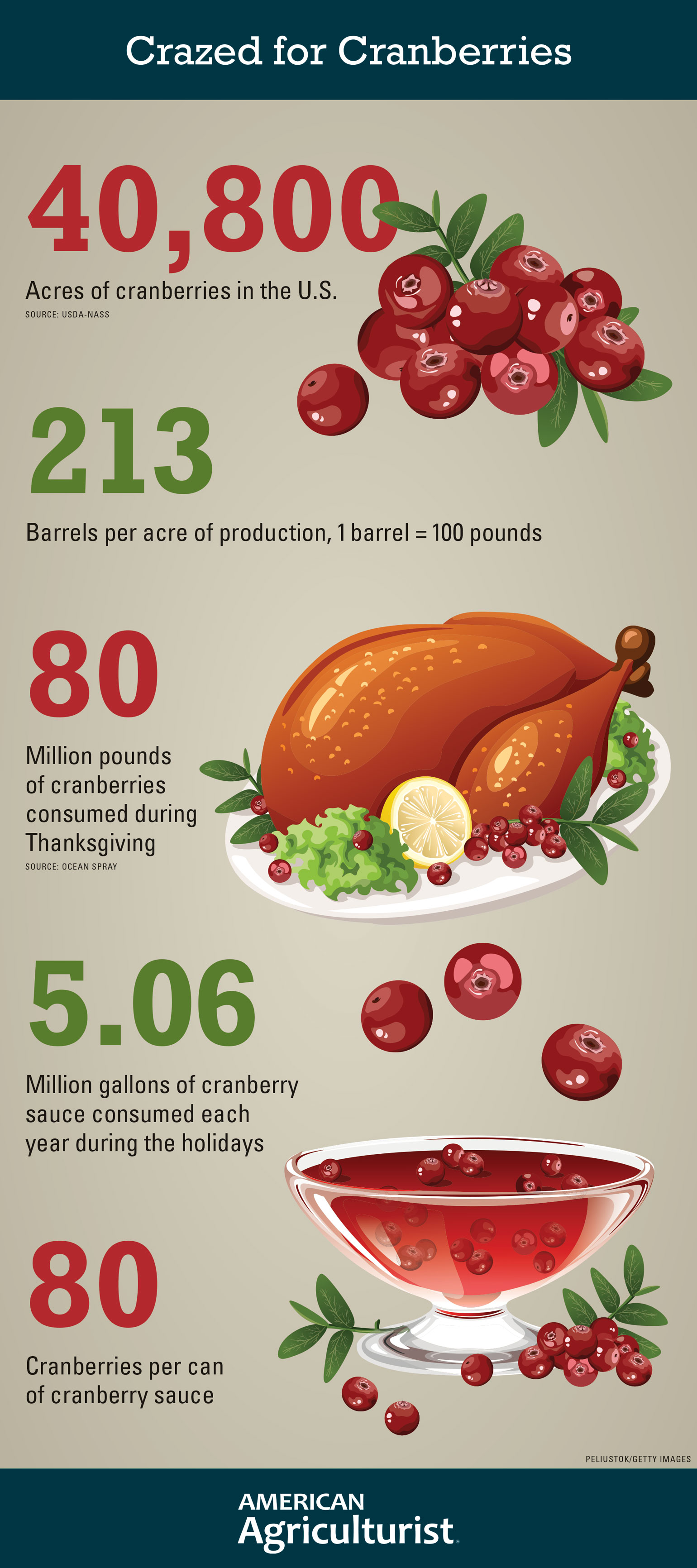 Infographic shows statistics on U.S. production of cranberries