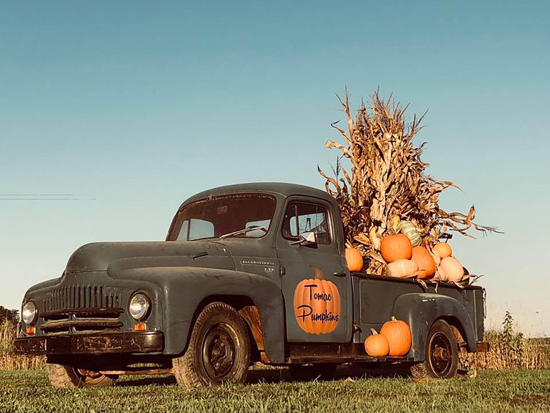 A vintage, dark green pickup truck decorated with pumpkins and harvested, dry corn stalks with an orange pumpkin painted on the driver side door that reads Tomac Pumpkins