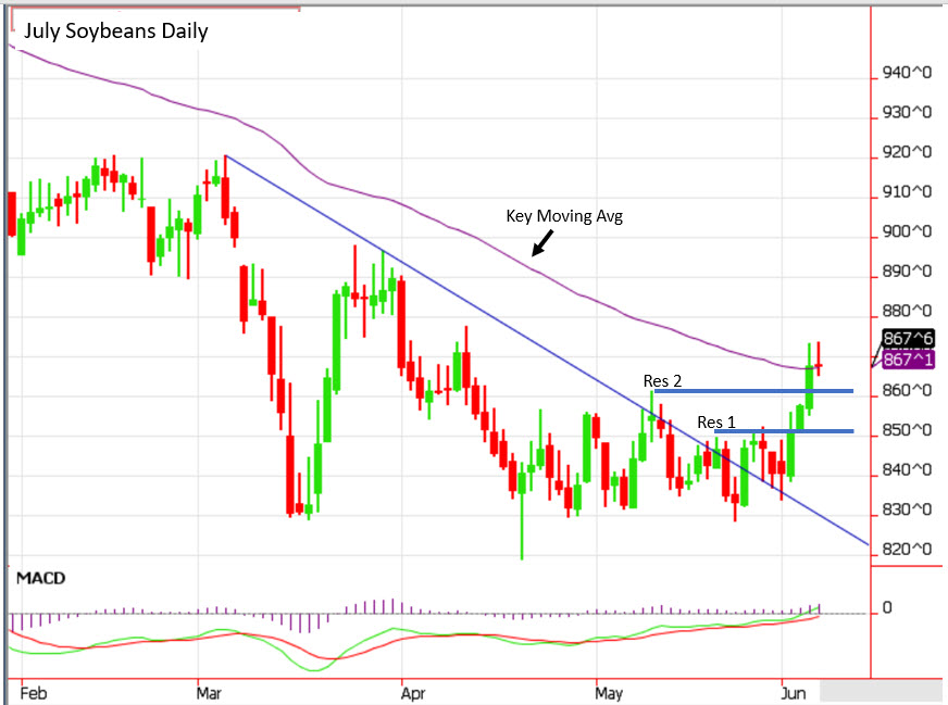 July soybeans daily