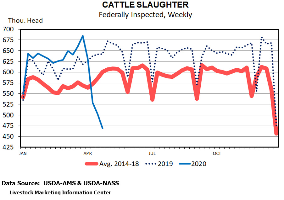 cattle-slaughter-graph.jpg