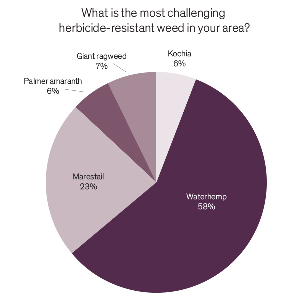 What is the most challenging herbicide-resistant weed in your area pie chart?