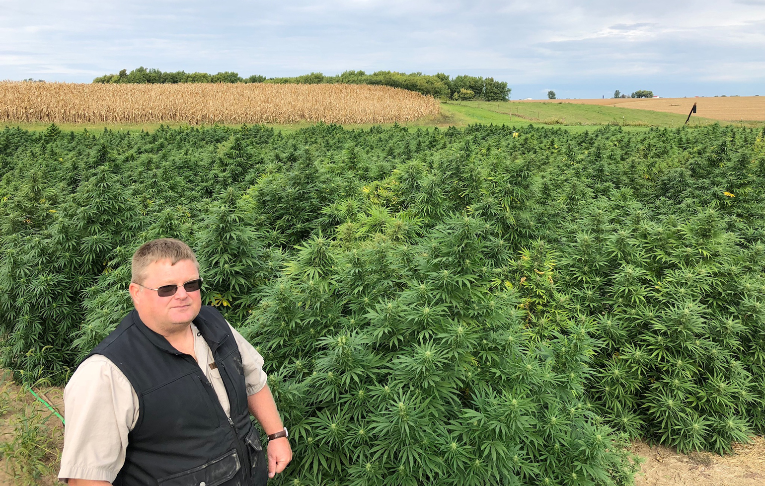Andy Huston standing in hemp field