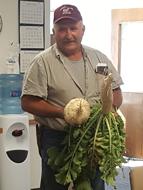 Randy Kudrna holding turnip from cover crop planting
