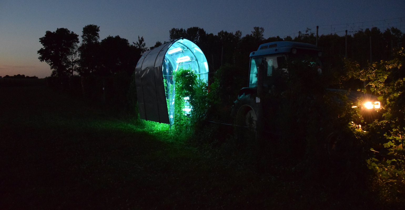 UV light treatments glow from an enclosure in the field shown at night