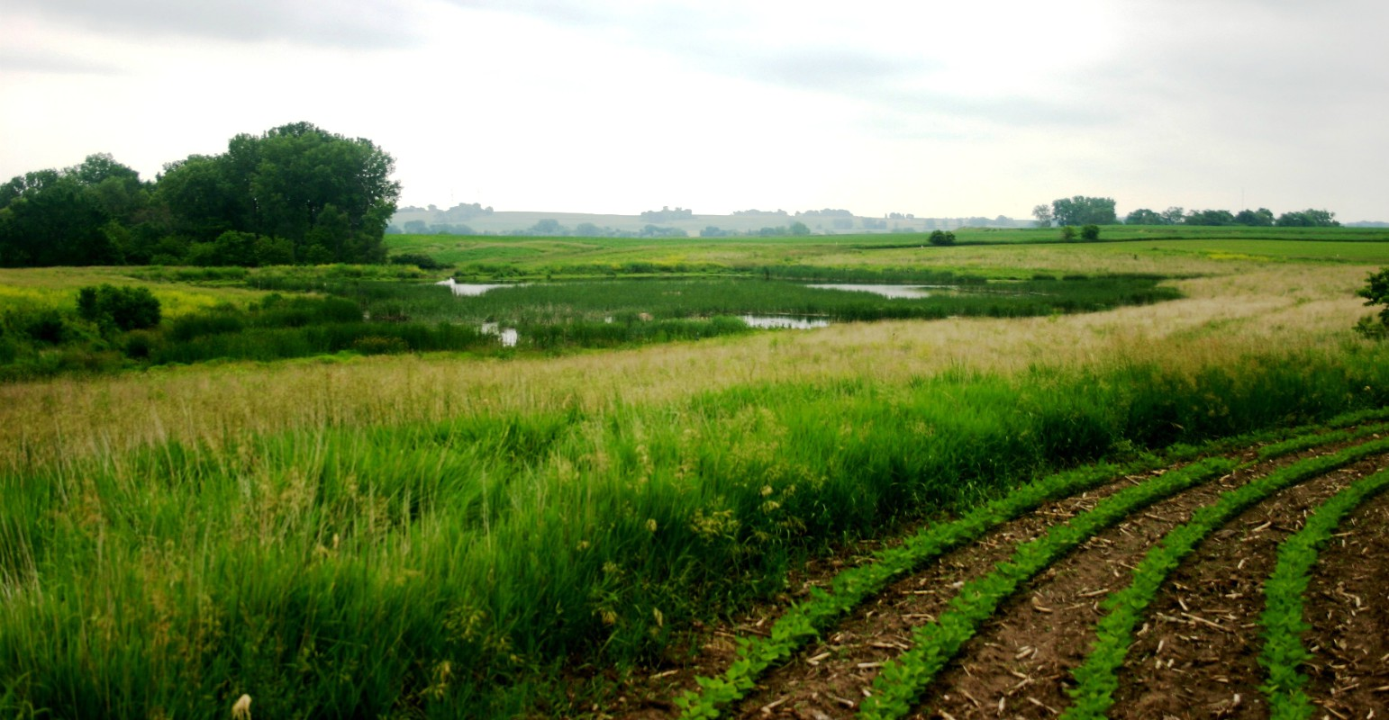 Find best conservation practices for your farm