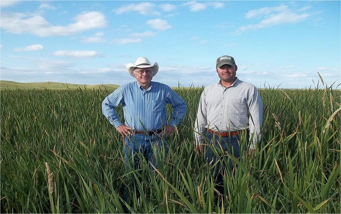 Lyle (left) and son Luke say their hay meadow acts as a filter strip for Swan Lake's watershed, but that has costs.