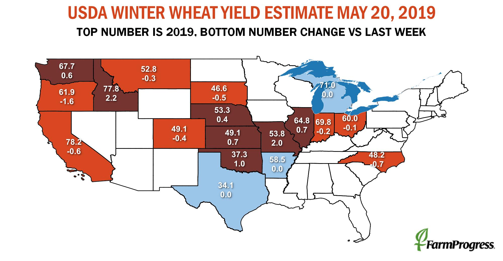 WinterWheat052019.jpeg