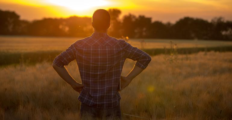 Young farmer looking at sunset