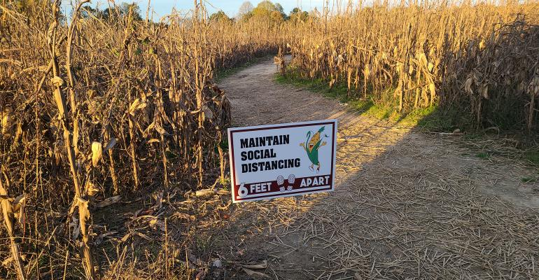 social distancing sign in corn maze
