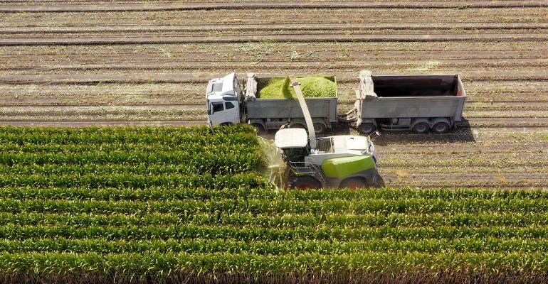 Combine harvesting and loading silage onto a double trailer truck