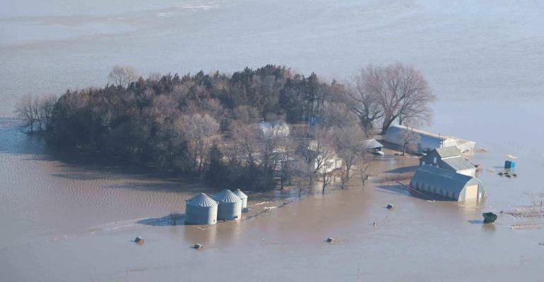 flooded farmfield
