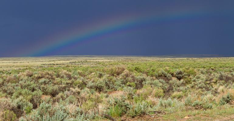 rainbow on rangeland
