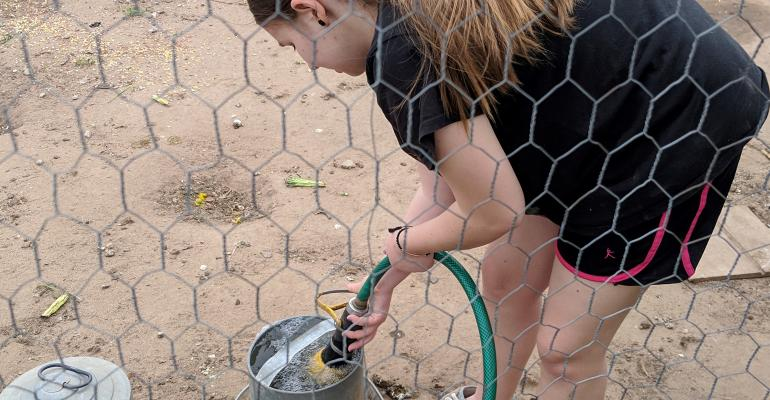Girl in chicken coop filling up pail with water hose
