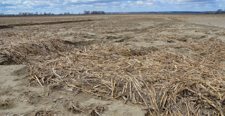 Burt County corn field shows the sand, silt and debris left behind after the 2019 flood