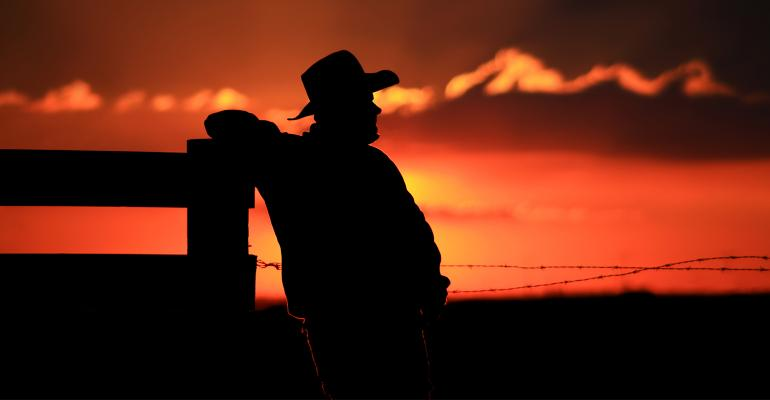 silhouette of rancher leaning against fence
