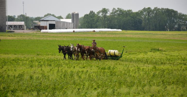 A farmer near Schaefferstown, Pa. drives a planter with a team of horses