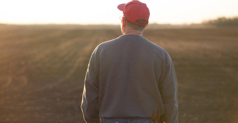 farmer in red hat looking into horizon