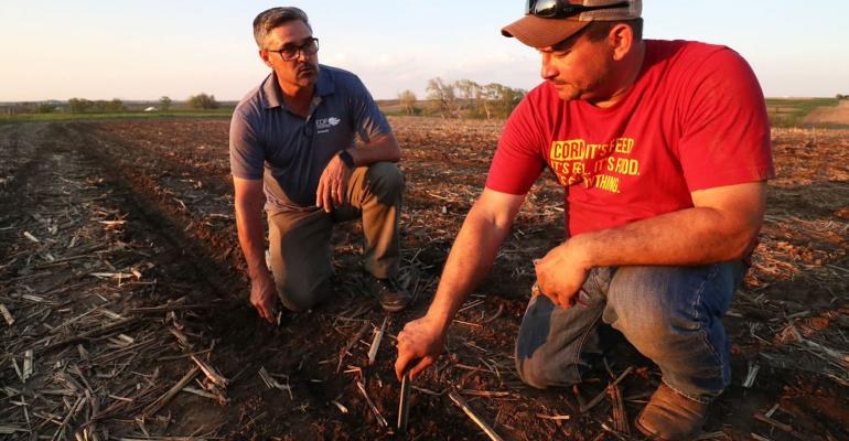 Kevin Ross and Eric Holst look at butterfly habitat plants