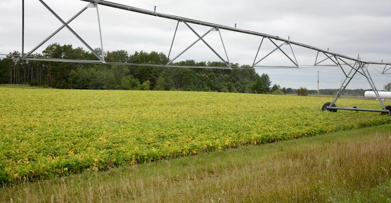 irrigation system in soybeans