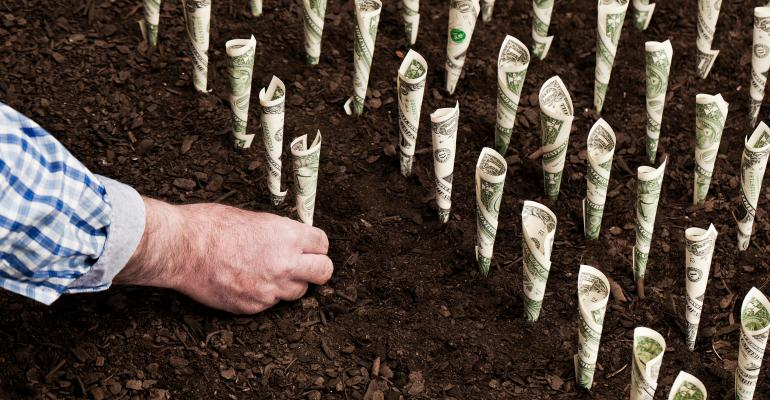 hand planting money into soil
