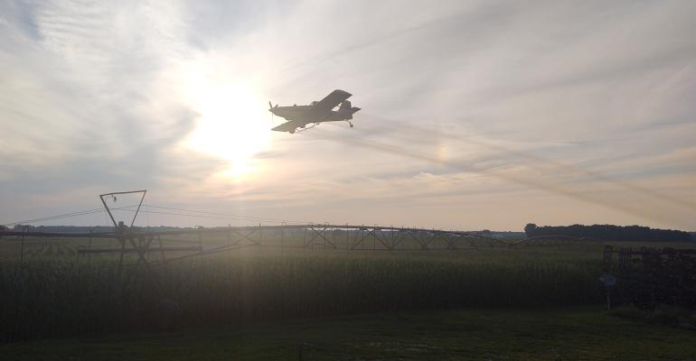 Aerial plane application of fungicide over farm field of corn.