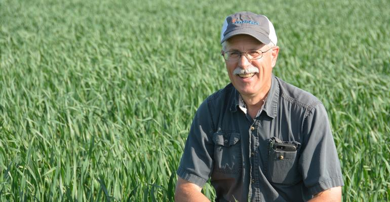 Paul Overby kneeling in oat field