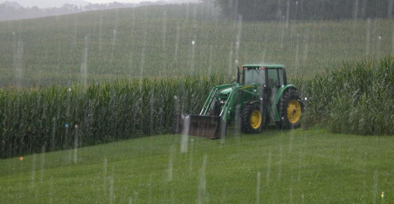 A parked tractor sits in the rain at the edge of cornfields