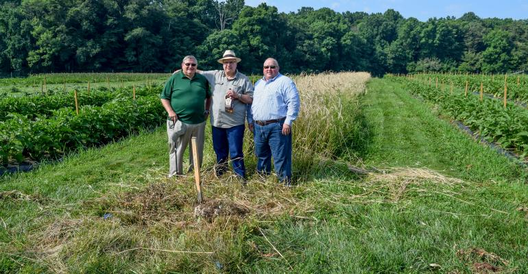 John Urbanchuk, Herman Mihalich and Broc A. Sandelin of Delaware Valley University and Dad's Hat distillery stand together in field of Rosen rye
