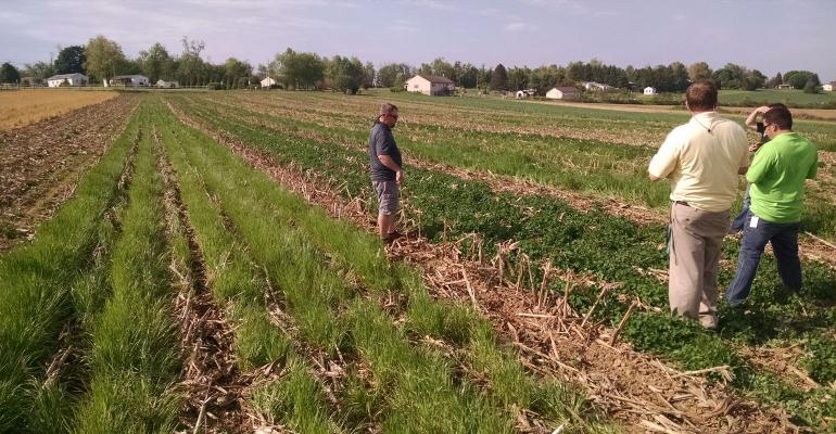 Farmers examine cover crops acres up close
