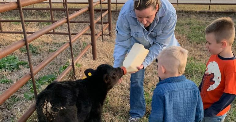 Woman bottle feeding a calf while two young boys watch