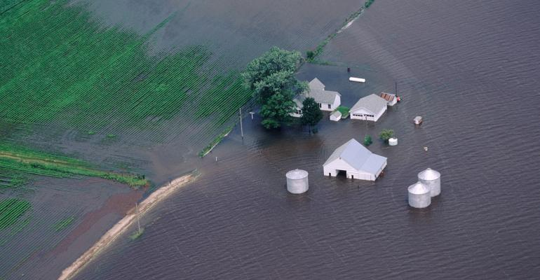 flooded farm and crop field