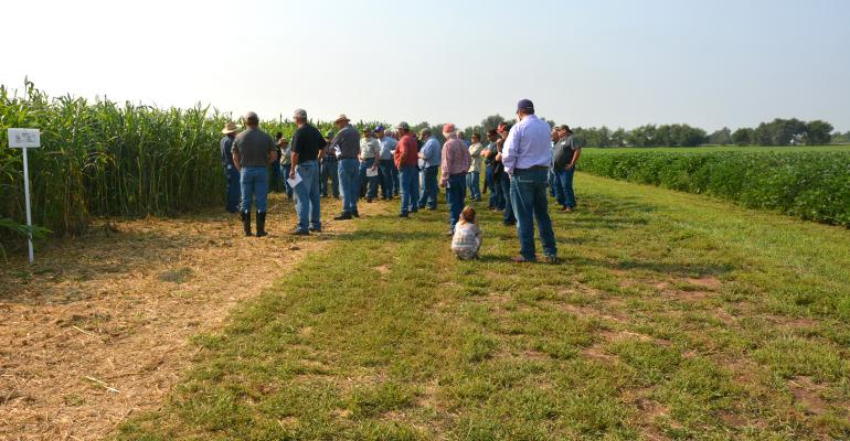 Visitors to a Soil Health Day