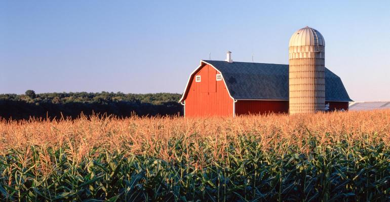 A red barn and silo in the middle of a cornfield