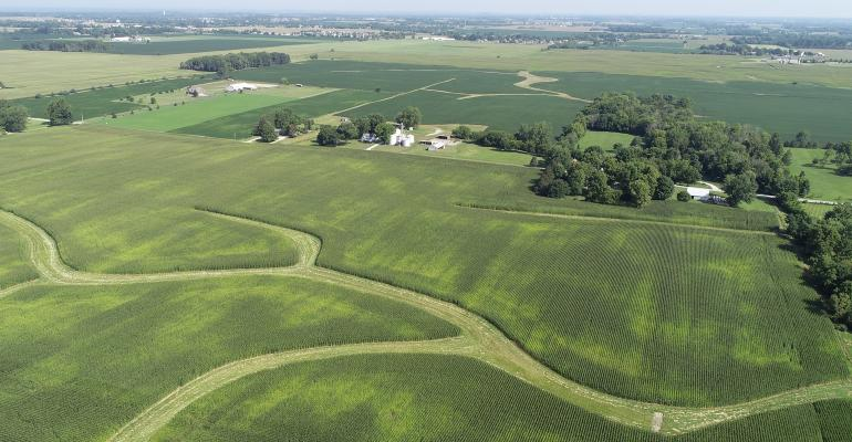 aerial view of soybean field