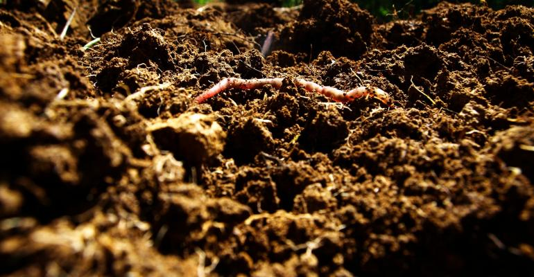 soil health and soil aggregates