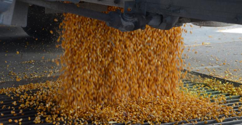 corn kernels being dipsersed from auger
