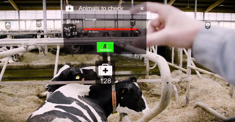 A view of Nedap's dairy augmented reality shows relevant cow data while goggles are pointed at a cow